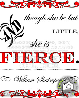 "design ""she is fierce"" website banners by the green cheetah photo&design"