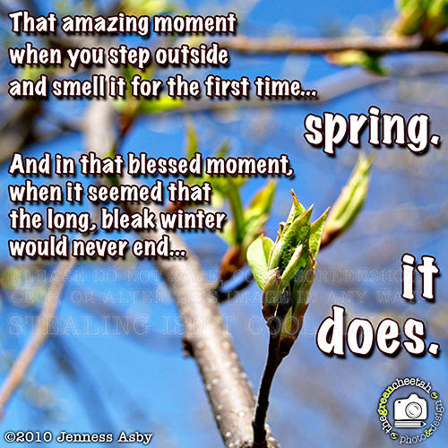 """image of a new tree bud with saying, """"That amazing moment when you step outside and smell it for the first time... spring. And in that blessed moment, when it seemed that the long, bleak winter would never end... it does."""
